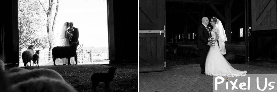 trouwfotograaf assen schaapskooi
