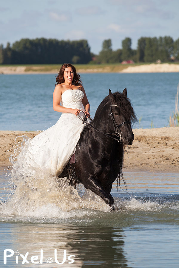 Trouwfotograaf Friesland Fries paard bruid trouwjurk