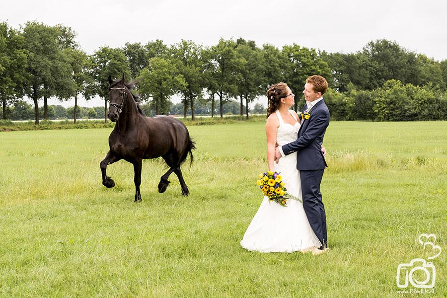 Bruiloft Hilbrand & Anne-lys