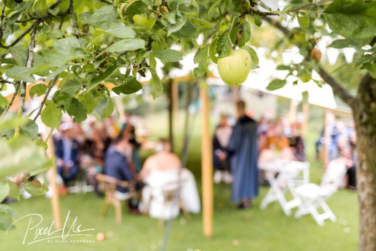 Bruidsfotograaf drenthe de Kruimel
