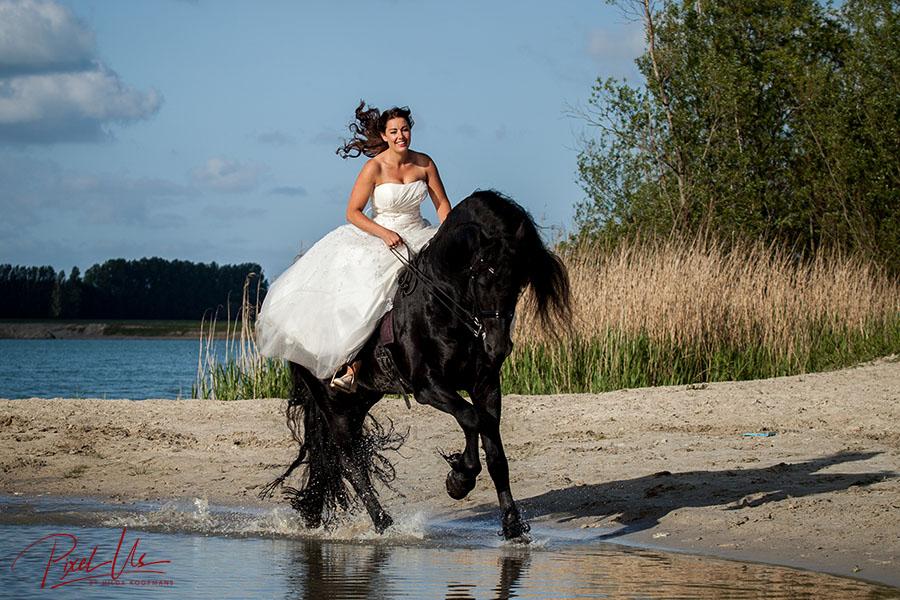 Bruid te paard